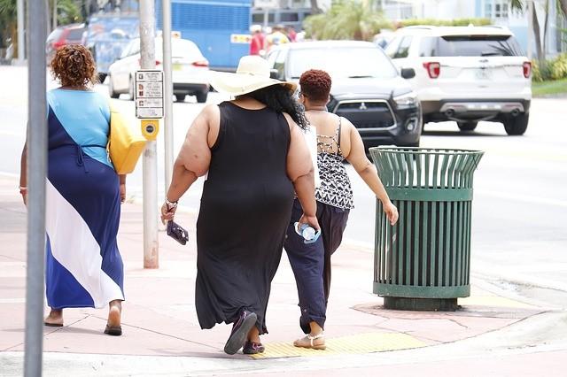 obesità, obeso, dieta