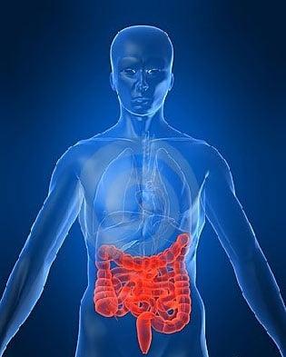 test microbioma