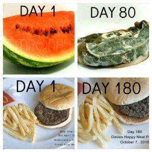 Additivi alimentari, permeabilità intestinale e autoimmunità